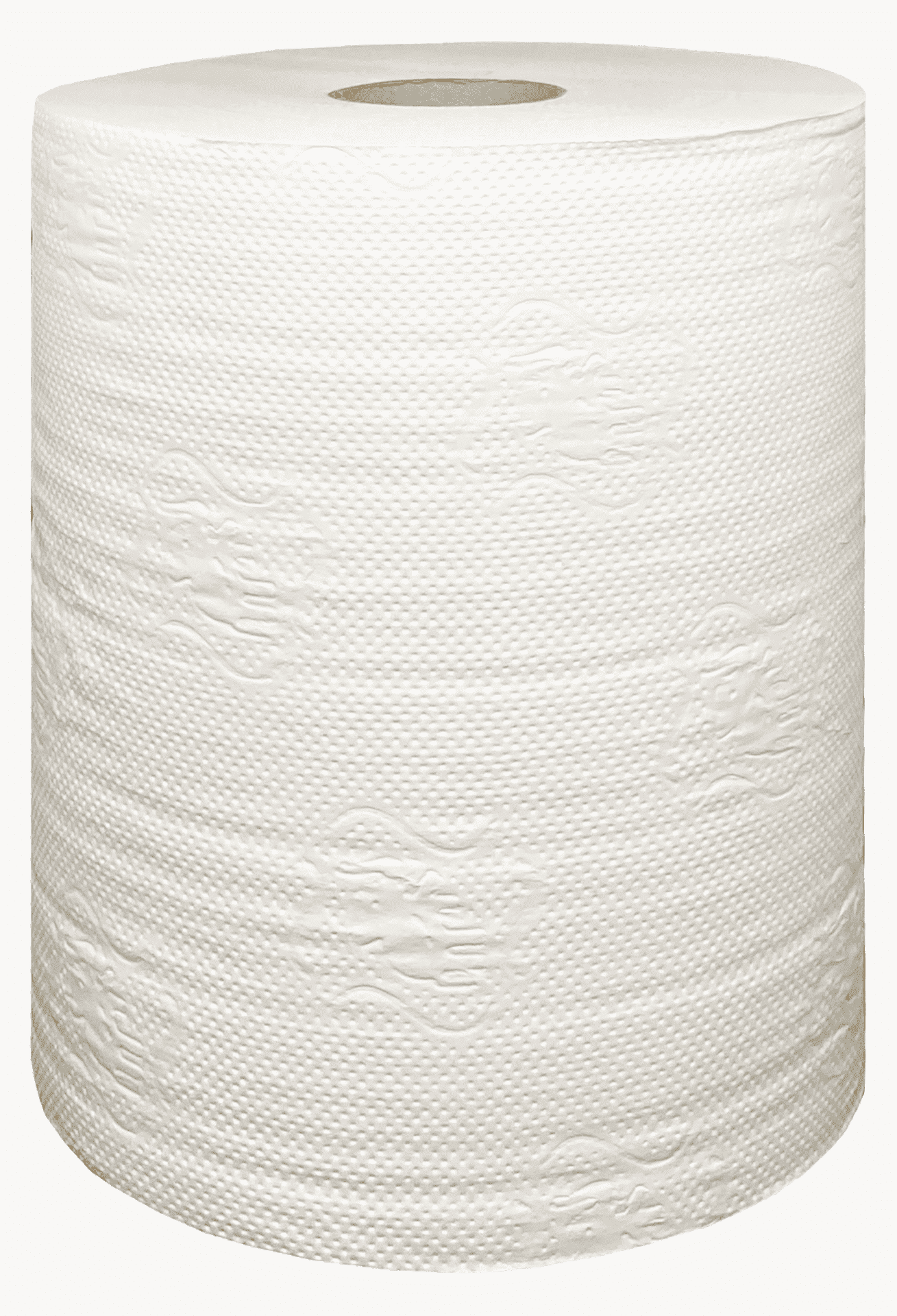 Рушники паперові «Лізоформ» у рулоні, 120м